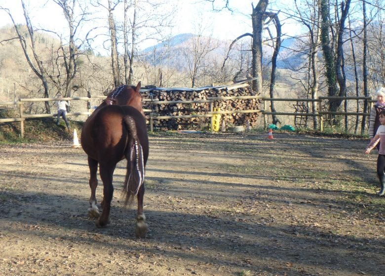 Ado Centaure médiation par l'animal en Ariège