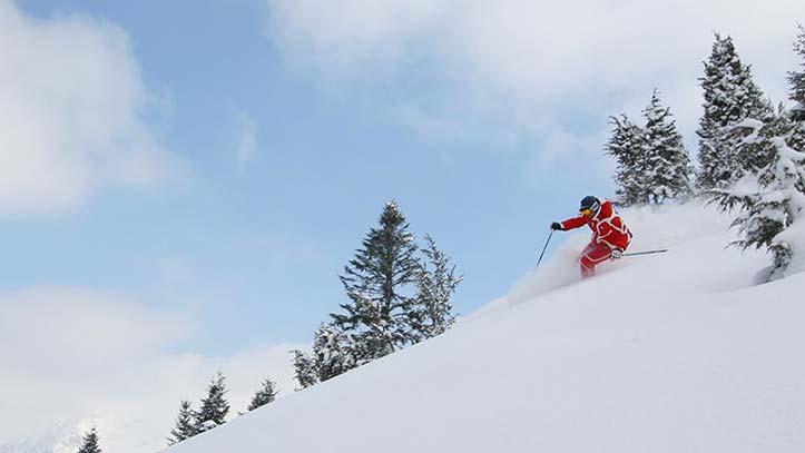 skieur en poudreuse sur la piste du Vallon