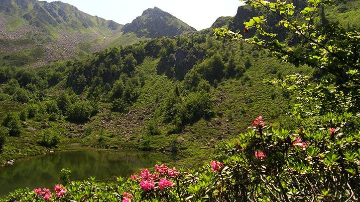 étang de Labant
