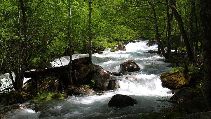 la rivière de l'Ars au printemps